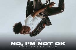 music video - no, i'm not ok - jay way - jay-way - Netherlands - indie - indie music - indie pop - indie rock - new music - music blog - wolf in a suit - wolfinasuit - wolf in a suit blog - wolf in a suit music blog