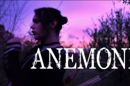 anemone - abel gray - uk - indie - indie music - indie pop - new music - music blog - wolf in a suit - wolfinasuit - wolf in a suit blog - wolf in a suit music blog
